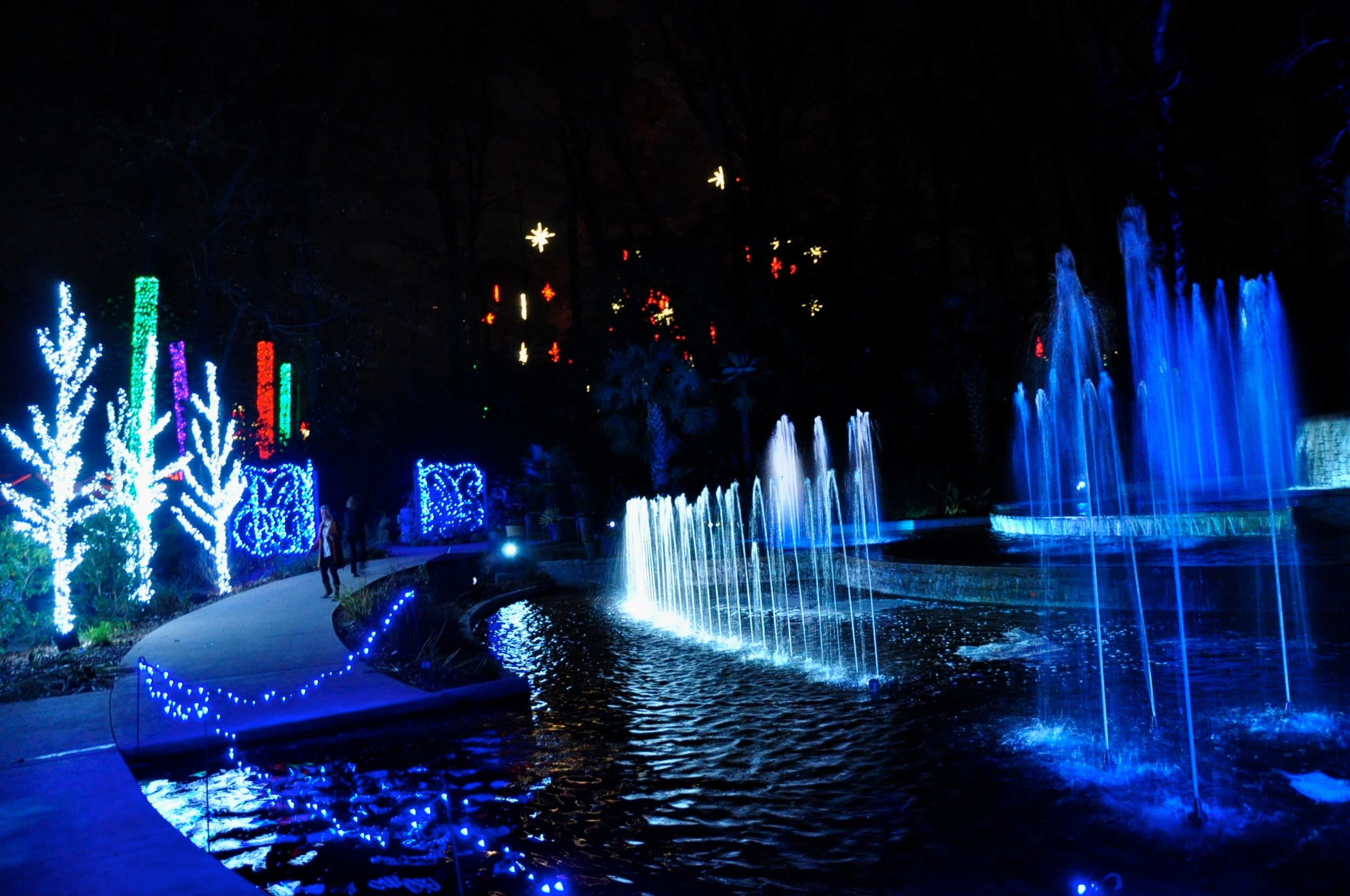 Botanical Garden Garden Lights Holiday Night Atlanta Ga The Memory